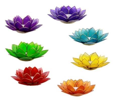 Lotus Capiz Kerzenhalter